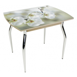 "Обеденный стол ""5.1 mini орхидея"""